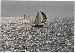 Barche A Vela - Non Viaggiata - Barche