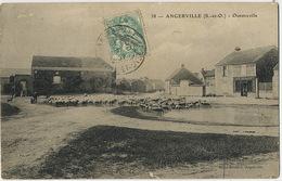 38 Angerville Ouestreville Hameau Troupeau De Moutons Café Sergent Editeur  Mlles Boulard - Angerville