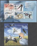 COMOROS, 2011 ,MNH, BIRDS, FLAMINGOES, SHEETLET+ S/SHEET