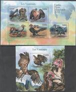 COMOROS, 2011 ,MNH, BIRDS, VULTURES, SHEETLET+ S/SHEET