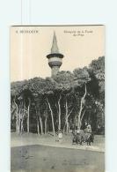 BEYROUTH - MOSQUEE De La Forêt Des Pins - Belle Scène Animée - TBE - 2 Scans - Liban
