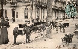 VICHY LES ANES DE LA MAIRIE  CARTE PRECURSEUR - Vichy