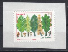 Les Forêts, AUTO ADHESIF N° 564,  2011  Neuf **   Grande Marge - Adhésifs (autocollants)