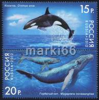 Russia - 2012 - Marine Mammals - Mint Stamp Set With Lacquer Imprint - 1992-.... Federation