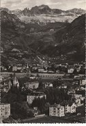 BOLZANO  - F/G  B/N Lucido  (230310) - Bolzano (Bozen)
