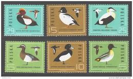 Poland 1985 Polen Mi 2998-3003 Wild Ducks / Jagdbare Wildtiere **/MNH - Entenvögel