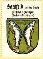 Werbemarke (Reklamemarke, Siegelmarke) Kaffee Hag : Wappen Von Saalfeld An Der Saale - Tea & Coffee Manufacturers