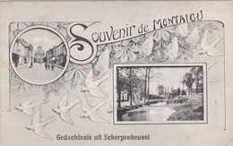 Scherpenheuvel - Souvenir - Scherpenheuvel-Zichem