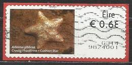 Irlanda 2013 - Cushion Star (Asterina Gibbosa) Animali (Fauna)   Stelle Marine   Vita Marina (su Frammento) - Affrancature Meccaniche/Frama