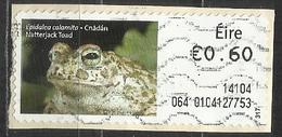 Irlanda 2013 - Natterjack Toad (Bufo Calamita) Anfibi   Animali (Fauna)   Rane (su Frammento) - Affrancature Meccaniche/Frama