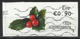 Irlanda 2013 - Holly Natale   Piante (Flora) (su Frammento) - Affrancature Meccaniche/Frama