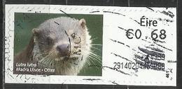 Irlanda 2014 - Otter (Lutra Lutra) Animali (Fauna)   Lontre   Mammiferi - (su Frammento) - Affrancature Meccaniche/Frama