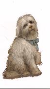 CHROMO DECOUPI GAUFFRE  PETIT CHIEN - - Animals
