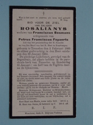 DP Rosalia NYS ( Petrus Franciscus FEYAERTS) Tremeloo 2 Feb 1860 - 29 Jan 1924 ( Zie Foto´s ) !