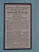 DP Dorothea FEYAERTS ( Jan Van Hove ) Tremeloo 26 Sept 1868 - 16 Sept 1921 ( Zie Foto´s ) !