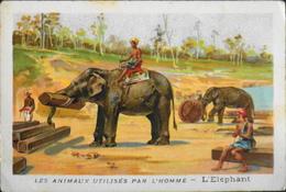 CHROMO & IMAGE - CHROMO Descriptive - LES ANIMAUX UTILISES Par L'HOMME - L' Eléphant - TBE - Chromos