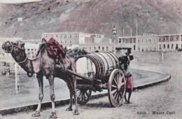 Yemen Aden Typical Water Cart And Camel - Yemen
