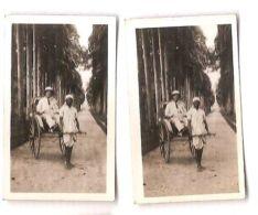 SRI LANKA -KANDY - PERADENIYA - CAVANDERS CIGARETTES PEEPS INTO MANY LANDS 1920s - Foto