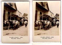 JAVA - VILLAGE -BULLOCK CARTS - CAVANDERS CIGARETTES PEEPS INTO MANY LANDS 1920s - Foto