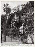 1950 - Iconographie Documentaire - Menton (Alpes-Maritimes) - L'entrée Du Paradou - FRANCO DE PORT - Unclassified