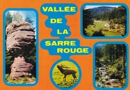 SARREBOURG - ABRESCHVILLER -  MOSELLE  (57) - CPSM MULTIVUES - Sarrebourg