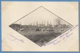 CPA  Les Solançons (près Cognac ) Dos 1900 écrite - Autres Communes