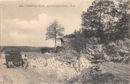 Thème Carrières / YVELINES - 78 - Cernay La Ville - Les Carrières De Grès - Animée - Cernay-la-Ville