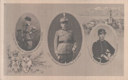 VENDO N.1 CARTOLINA MILITARE-IL NARESCIALLO CONTE LUIGI CADORNA,FORMATO PICCOLO DEL 1913 CIRCA NON VIAGGIATA - War 1914-18