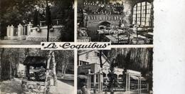 91 MILLY La FORET Le Coquibus Route De Fontainebleau Auberge En Foret De Fontainebleau 4 Vues - Milly La Foret