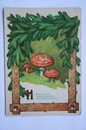 "OLD USSR Postcard  - ""Amanita"" By Dudnikoff -   Champignon  - Mushroom - Old Russian Puzzle 1956 - Champignons"