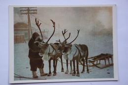 RUSSIA. Far East. YAKUTIA. Deer Sleigh - Rare Postcard 1957 - Russia