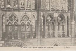 (CPA1251) LEON. CATEDRAL. DETALLE DEL TRIFORIUM ++ UNUSED - León
