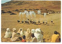 Maroc - Le Maroc Pittoresque - Fantasia Berbère - Ed. Bertrand N° BR. 314 - Sin Clasificación