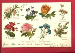 FJL-08 Language Des Fleurs,. Circulé Sous Env. Petite Fente  Précurseur - Flowers