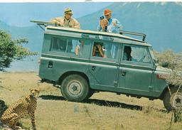 KENYA - 1974 , Gepard , Cheetah - Kenia