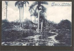 Habana. Nacimiento Del Rio Almendares. WITH CANCELED POSTAGE DUE To Belgium. - Cuba