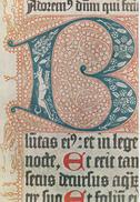 The British Library - Latin Psalter - Museum