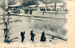 N°33273 -cpa Bern -baerengraben- - Ours