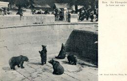 N°33274 -cpa Berne -la Fosse Aux Ours- - Ours