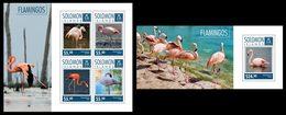 SOLOMON Isl. 2014 - Flamingos - CV = 18 €