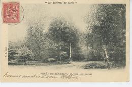 DRAVEIL - CHAMPROSAY - Forêt De SENART - La Voie Aux Vaches (carte Précurseur) - Draveil