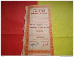 AMIEUX Armement Et Peche (1949) AGADIR-MAROC - Non Classés