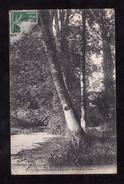 CPA - 41 - PARC DU CHATEAU D AVARAY - LE PONT DE LIERRE - France