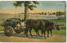 Water Seller Vendedor De Agua Cuba  Ox Cart With Wooden Wheels Edicion Jordi No 73 Roues Pleines En Bois - Kuba
