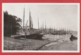 CPSM: Concarneau (29) Thonniers Désarmés Dans L'arrière Port (Villard N°75) - Concarneau