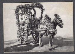 1955 PALERMO CARRETTO SICILIANO FG V SEE 2 SCANS ANIMATA - Palermo