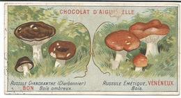 CHROMOS CHOCOLAT D' AIGEBELLE  -  RUSSULE  BON  -  RUSSULE VENENEUX - Aiguebelle