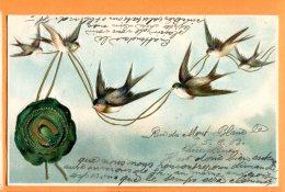 Y210, Hirondelle, Relief, Bird, Oiseau,précurseur, Porte-Bonheur, Circulée 1903 - Vogels