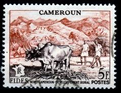 French Cameroon, FIDES, Rural Development, 1956, VFU - Cameroun (1915-1959)