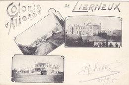 Lierneux - Colonie D'Aliénés (multivues, Précurseur, 1902) - Lierneux